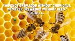 we-once-grew-good-without-chemicals-we-never-grew-food-without-bees
